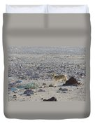 Coyote In Death Valley National Park -a Duvet Cover