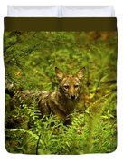 Coyote Of The Woods Duvet Cover