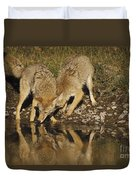 Coyotes Duvet Cover