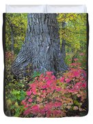 Cranberry Bush And Cottonwood Tree Duvet Cover