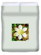 Cream Cup In Park Sierra Near Coarsegold-california Duvet Cover