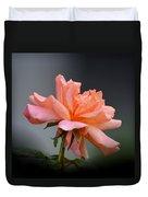 Creamy Peach Rose Duvet Cover