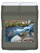 Creek Entering Andreas Canyon In Indian Canyons-ca Duvet Cover