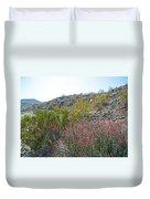 Creosote And Chuparosa On Henderson Trail In Santa Rosa-san Jacinto Nmon-ca Duvet Cover