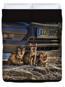 Cretan Cats-1 Duvet Cover