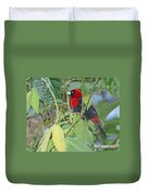 Crimson-collared Tanager Duvet Cover