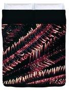 Crinoids 6 Duvet Cover