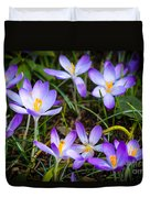 Crocuses Duvet Cover