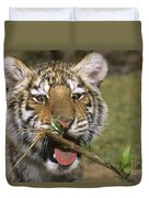 Crosseyed Siberian Tiger Cub Endangered Species Wildlife Rescue Duvet Cover