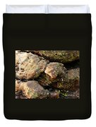 Crotchety Old Moss Covered Tree Man Duvet Cover
