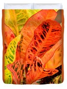 Croton's Many Colors Duvet Cover