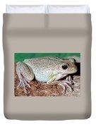 Cuban Tree Frog Osteopilus Duvet Cover