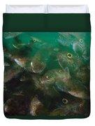 Cunner Fish Nova Scotia Duvet Cover
