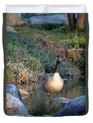 Curious Canadian Goose Duvet Cover