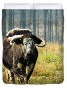 Curious Cow Duvet Cover