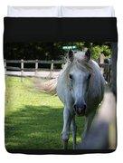Curious Horse Duvet Cover