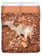 Curious Squirrel 2 Duvet Cover