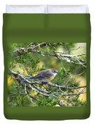 Curious Warbler Duvet Cover