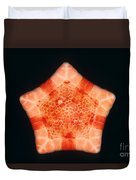 Cushion Star Duvet Cover