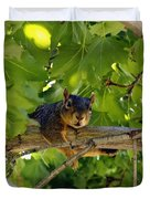 Cute Fuzzy Squirrel In Tree Duvet Cover