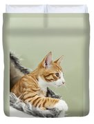 Cute Ginger Kitten On The Loookout Duvet Cover