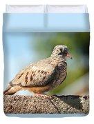 Cute Inca Dove Duvet Cover by Robert Bales