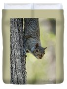 Cute Squirrel  Dare Me Duvet Cover