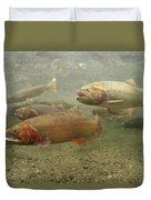 Cutthroat Trout In The Spring Idaho Duvet Cover by Michael Quinton