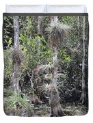 Cypress Airplant Display Duvet Cover