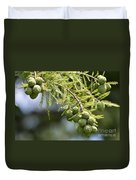 Cypress Nuts Duvet Cover