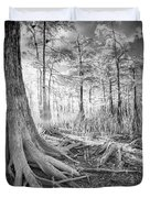 Cypress Roots In Big Cypress Duvet Cover