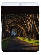 Cypress Tree Tunnel Duvet Cover