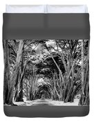 Cypress Tree Tunnel Point Reyes Duvet Cover