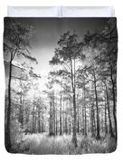 Cypress Trees In Big Cypress Duvet Cover