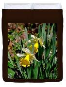 Daffodil Buddies Duvet Cover