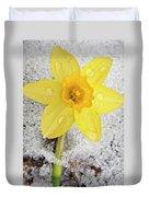 Daffodil In Spring Snow Duvet Cover