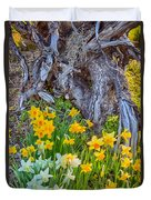 Daffodils And Sculpture Duvet Cover