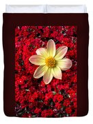 Dahlia And Kalanchoe Duvet Cover
