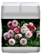 Dahlia Love Duvet Cover