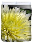 Dahlia Named Canary Fubuki Duvet Cover