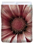 Daisy Daisy Blush Pink Duvet Cover