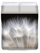 Dandelion Backlit Close Up Duvet Cover