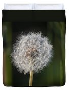 Dandelion With Abstract Grasses Duvet Cover