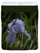 Dashing Pale Violet Iris Duvet Cover