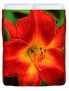 Day Lily1 Duvet Cover