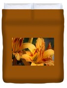 Daylillies0185 Duvet Cover