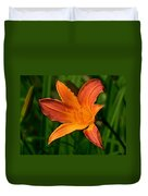 Daylily II Duvet Cover