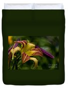 Daylily Picture 452 Duvet Cover