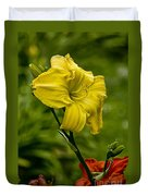 Daylily Picture 469 Duvet Cover