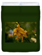 Daylily Picture 474 Duvet Cover